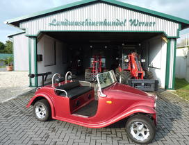 Electro-Cart Roadster 220